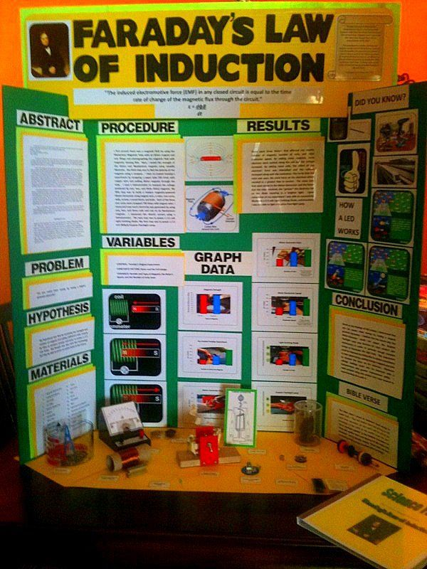 Examples Of Science Fair Projects Gallery - example cover letter for ...